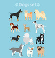 set of funny purebred dogs vector image vector image