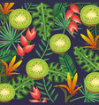 tropical garden with kiwi vector image vector image