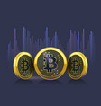 bitcoin cryptocurrency exchange rate chart vector image
