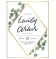 floral design card with eucalyptus greenery frame vector image vector image