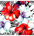 hibiscus watercolor pattern black and white vector image vector image