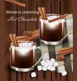 hot chocolate glasses realistic cinnamon vector image
