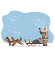 husky dogs and eskimo in fur clothes with sleigh vector image