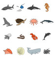 icons of sea inhabitants in a flat style with a vector image vector image