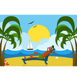 Lounging Man on Beach vector image vector image