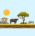 savannah animals in africa landscape