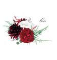 stylish burgundy dahlia ivory white and red wine vector image vector image