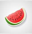 watermelon sticker cartoon vector image vector image