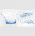 crown and splashes of water vector image vector image