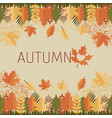 leaves and mandalas autumn decorations vector image vector image