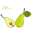 pear fruit vector image vector image