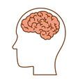 profile with brain human organ icon vector image vector image