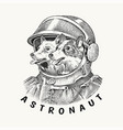 two dogs husky astronauts in a spacesuit vector image
