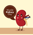 world kidney day disease awareness campaign vector image