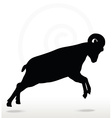 big horn sheep silhouette in attacking pose vector image vector image