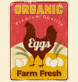 chicken poster fresh egg healthy farm food vector image vector image