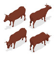isometric dairy cattle set cows collection vector image