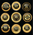 luxury golden retro badges collection 12 vector image
