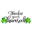 shake your shamrocks vector image vector image