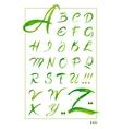 Set hand-drawn calligraphy alphabet on white vector image