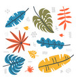 botanical set tropical leavesl contemporary vector image vector image