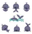 cartoon whales vector image vector image