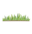 green grass natural organic bio eco vector image