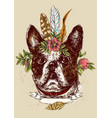hand drawn bulldog sketch vector image