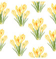 yellow crocus flowers bouquet seamless pattern vector image