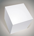blank box template for your package design put vector image vector image