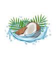 coconut water concept realistic coconut vector image vector image