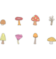 Different types of mushrooms set vector image vector image