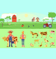 farming infographic elements vector image