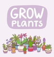 Grow plants vector image vector image