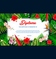kids diploma with tropical plants and flowers vector image