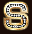 s bling vector image vector image
