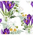 seamless floral violet crocus flowers vector image vector image