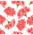 seamless texture pink hibiscus cracks vintage vector image vector image