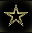 stylized star with yellow light bulbs vector image