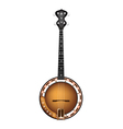 A Beautiful Brown Banjo on White Background vector image