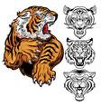animals angry tiger drawing head tiger vector image