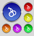Cherry icon sign Round symbol on bright colourful vector image