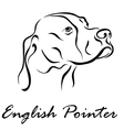 English Pointer vector image