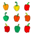 icon peppers vector image