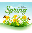 nature spring background with a green grass and vector image