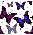 seamless pattern of colorful butterfly on a white vector image vector image