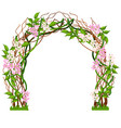 wedding arch decorated with pink flower buds vector image