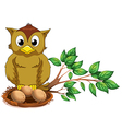 An owl watching her nest vector image vector image