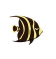 cute fish icons set tropical vector image