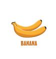 logo banana farm design vector image vector image